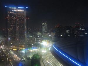 観覧車からの夜景-01.JPG
